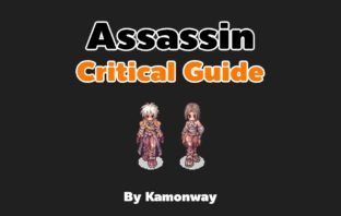 Ragnarok Assassin Critical Guide