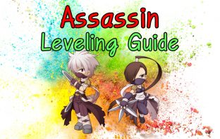 Ro Assassin Leveling Guide